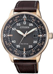 Citizen Eco-Drive Aviator 100m Pilot's Leather Watch