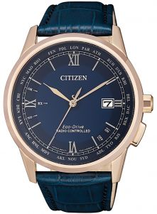 Citizen Eco-Drive Radio Controlled Sapphire Perpetual Men's Watch